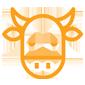 vacas-secas